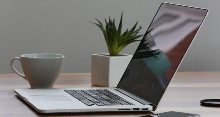 laptop & cactus